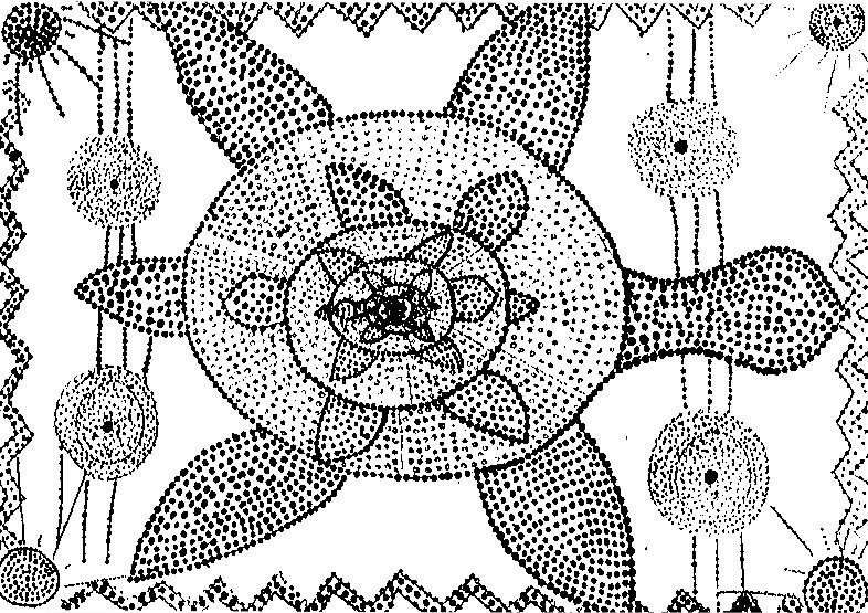 786x555 Adult Coloring Page Aboriginal Art Tortoise
