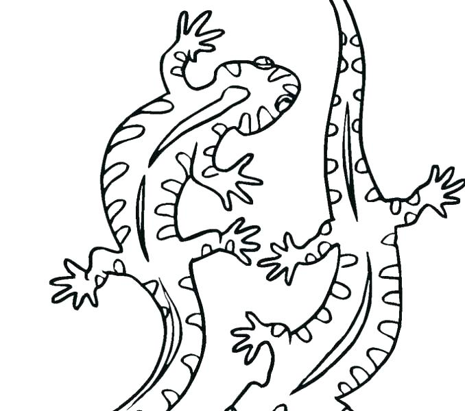 678x600 Coloring Pages Valentines Free Aboriginal Colouring Pages For Kids