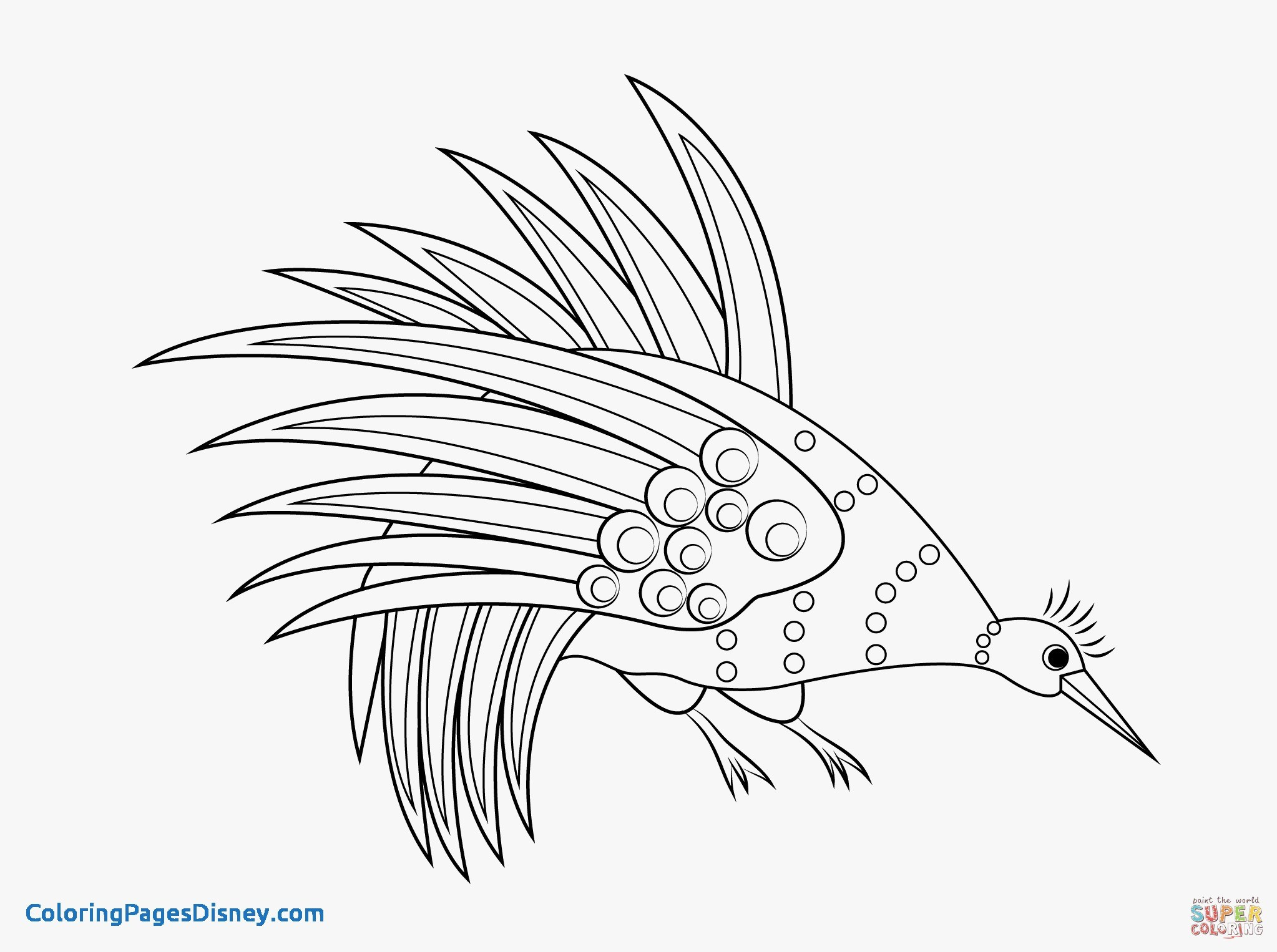 2046x1526 Aboriginal Art Coloring Pages Elegant Weird X Ray Fish Coloring