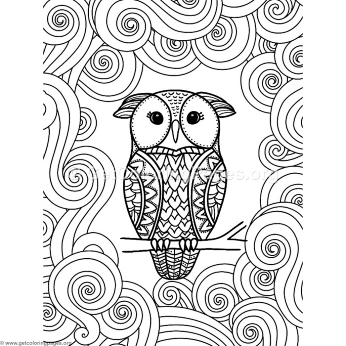 700x700 Abstract Owl Coloring Pages
