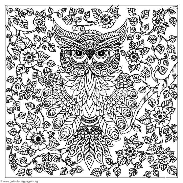 700x700 Free To Download Abstract Owl Coloring Pages Adult Coloring