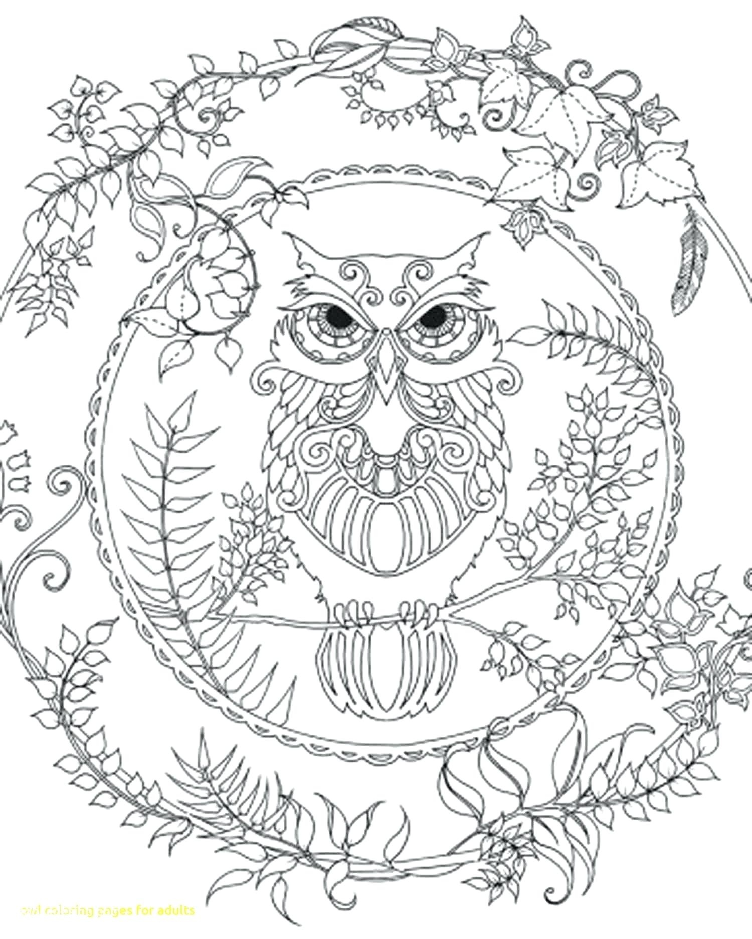 1500x1874 New Coloring Owl Coloring Barn Pages For Adults Abstract Free