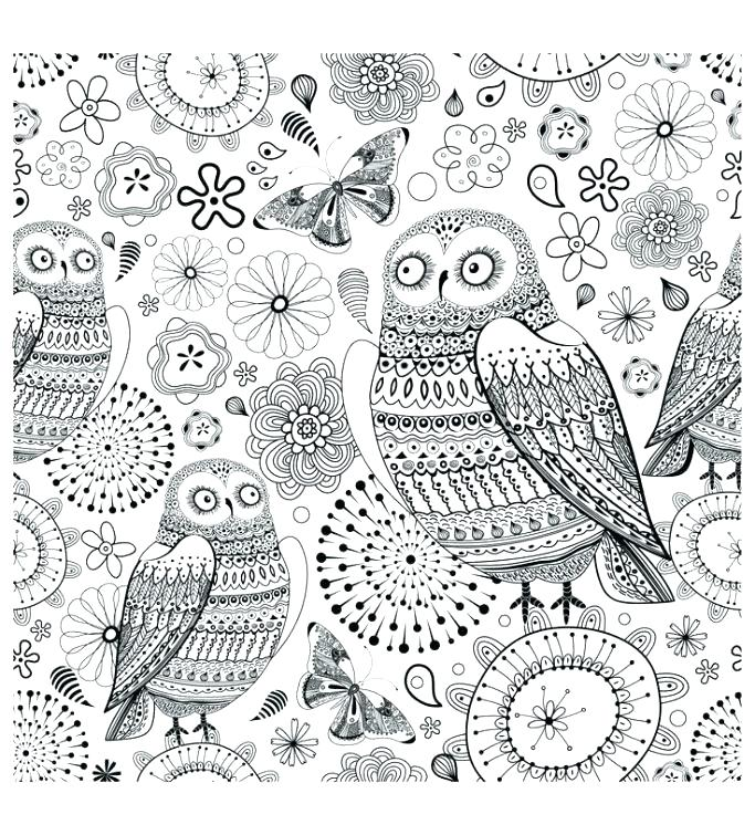 683x755 Owl Coloring Pages For Adults Or Owl Coloring Pages For Adults
