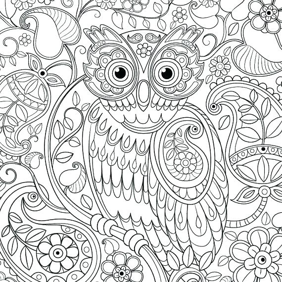 570x570 Abstract Owl Coloring Pages For Adults