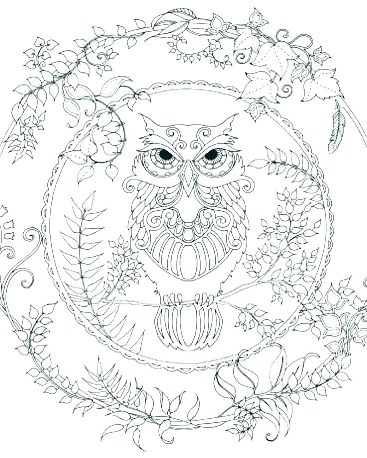 736x919 Abstract Owl Coloring Pages Abstract Coloring Page Abstract Owl