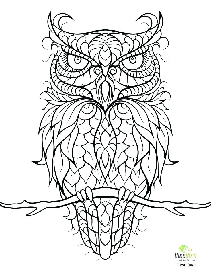 736x952 Abstract Owl Coloring Pages An Owl Abstract Coloring Pages