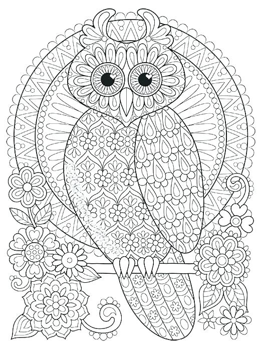 521x700 Abstract Owl Coloring Pages Ing Ing Abstract Owl Colouring Pages