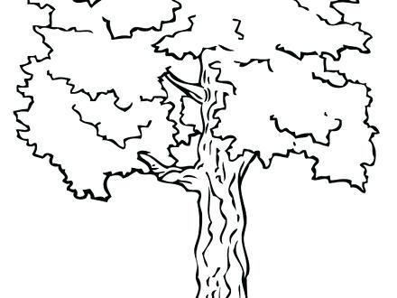 440x330 Coloring Pages Tree Fabulous Fall Trees Coloring Pages Coloring