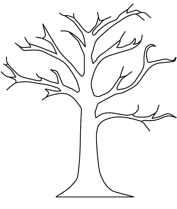 700x825 Fall Leaf Coloring Page Acacia Tree Coloring Page Fall Leaves