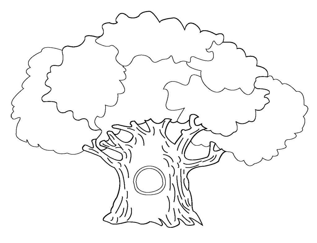 1024x784 Tree Coloring Pages For Kids Printable Printabl With Tremendous