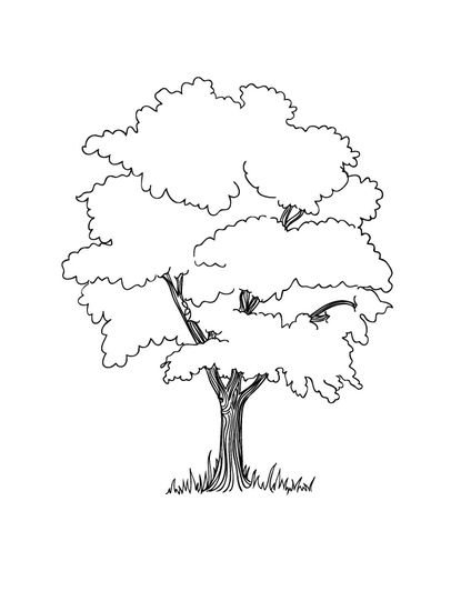 406x532 Apple Tree Coloring Book