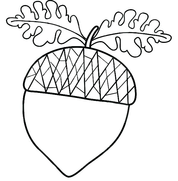 600x612 Acorn Coloring Pages Squirrel Sally Acorn Coloring Pages