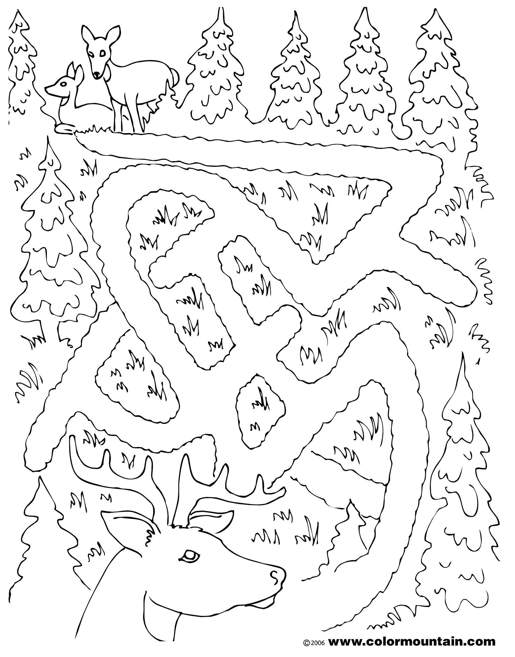 1800x2294 Deer Maze Activity Coloring Sheet Coloring Page Wea Deer Class