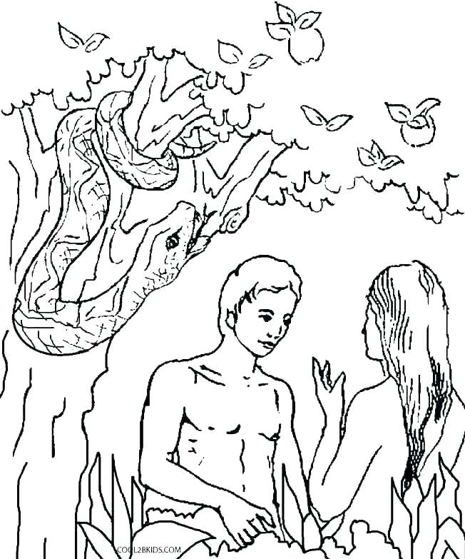 652x783 Adam And Eve Colouring Page And Eve Coloring Page Coloring Pages