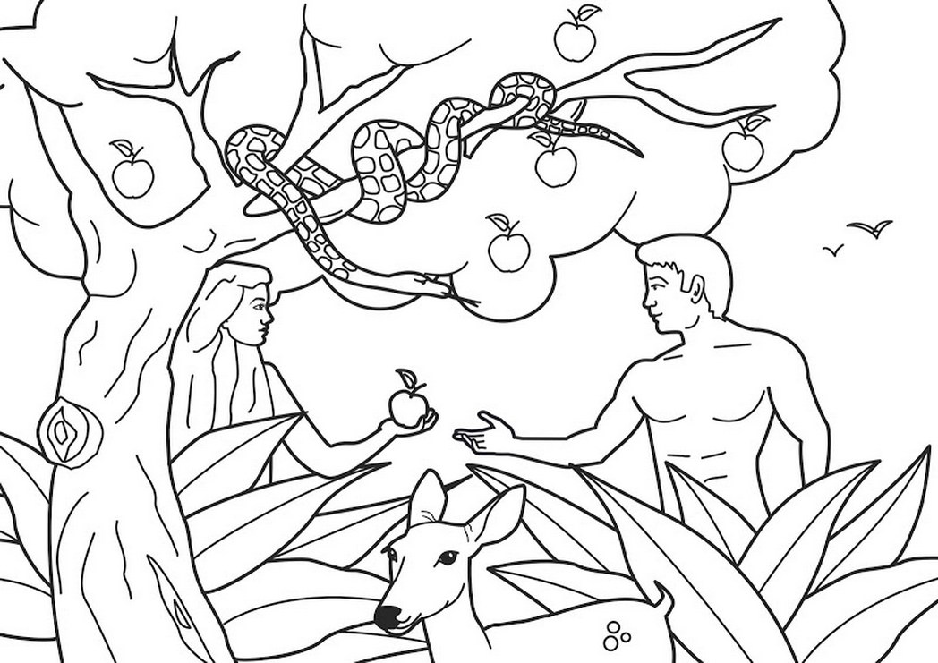 1048x741 Bible Coloring Pages For Adam And Eve
