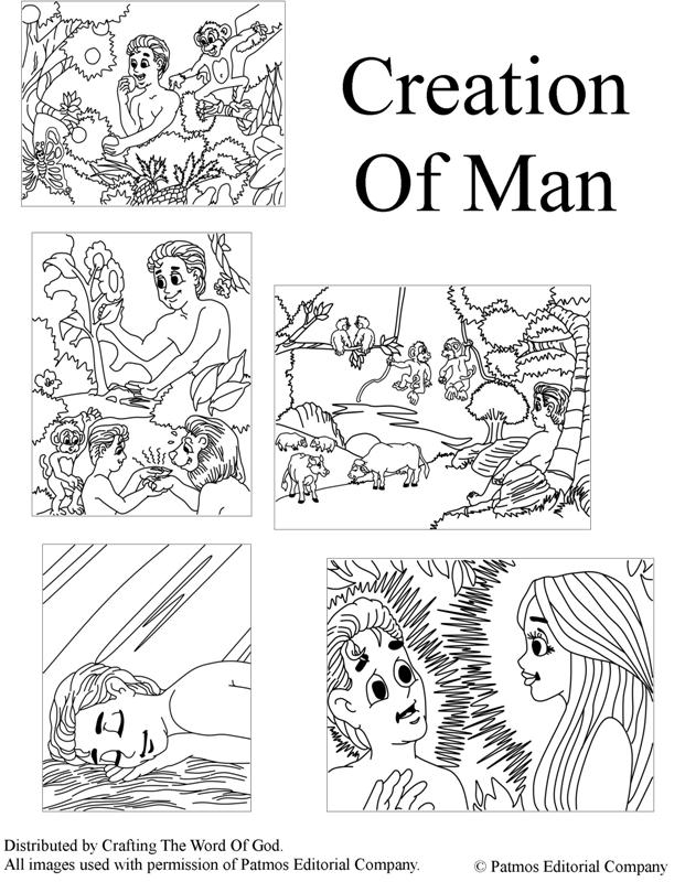621x800 Creation Of Man Coloring Pages Crafting The Word Of God