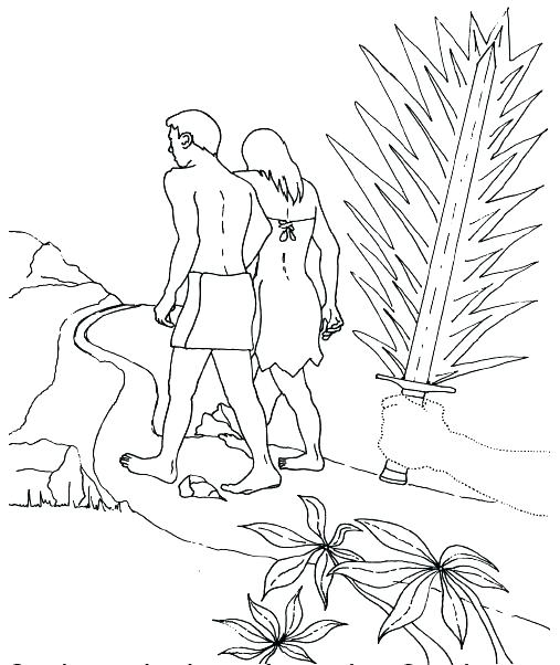507x602 Adam Eve Coloring Pages