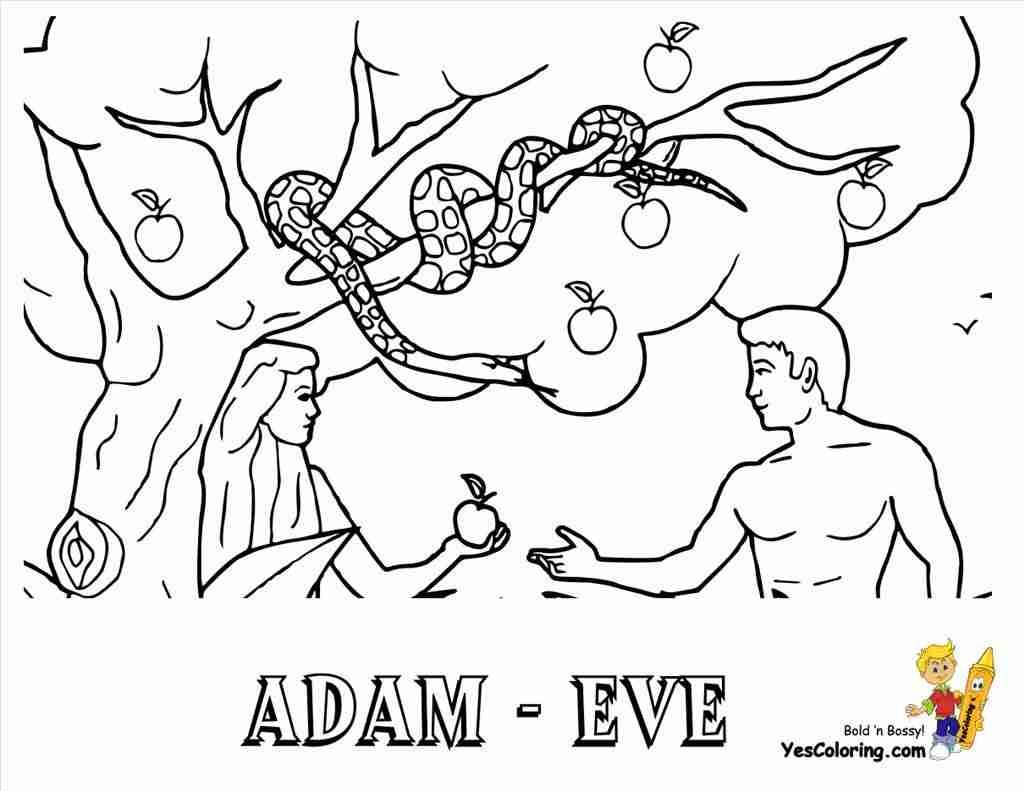 1024x791 Best Adam And Eve Coloring Pages Imagine Unknown Resolutions