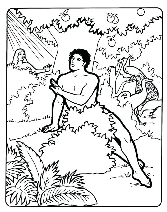 576x732 Adam And Eve Coloring Pages Images And Eve Coloring Page Coloring