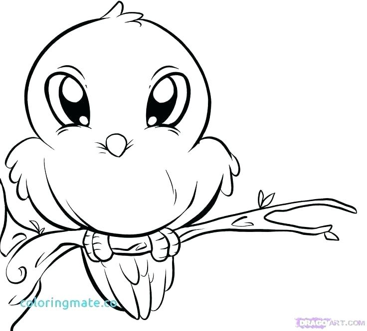 736x665 Adorable Coloring Pages