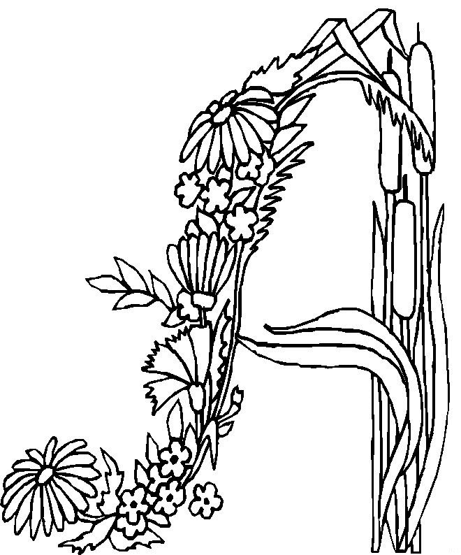 660x794 Kids N Coloring Pages Of Alphabet Flowers