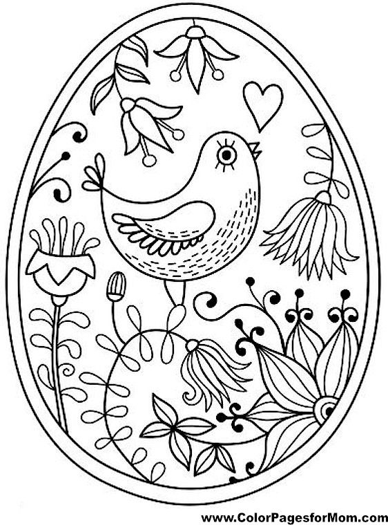 562x760 Bird Coloring Page Adult Coloring Pages Books