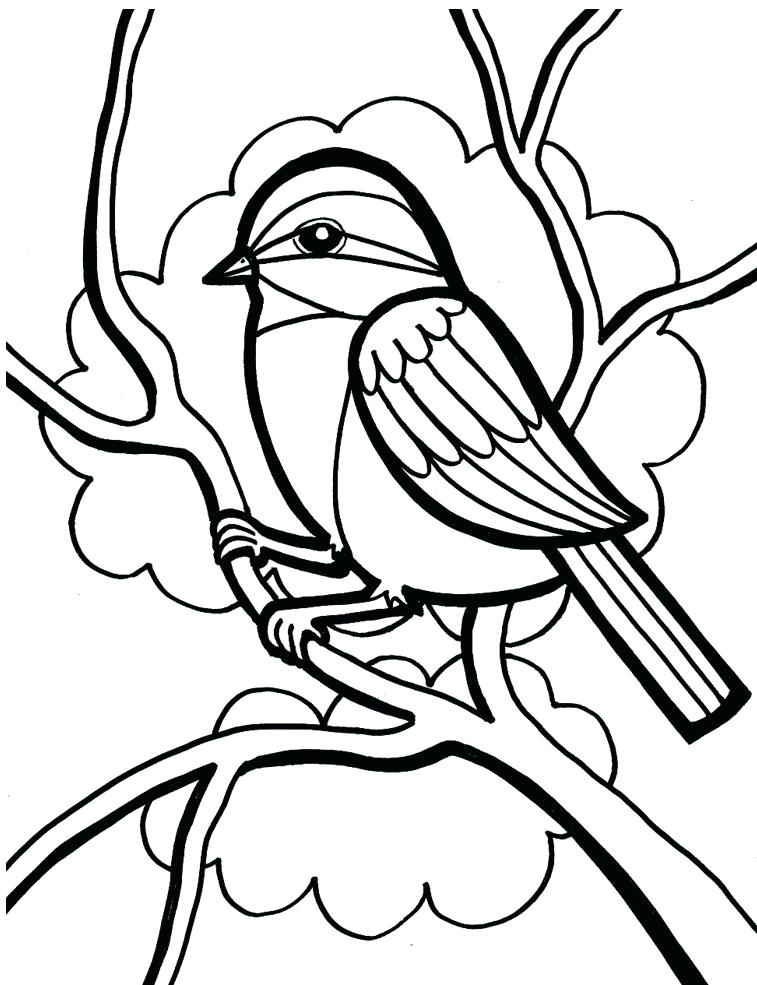 757x985 Coloring Page Of A Bird Coloring Page Bird Toucan Coloring Page