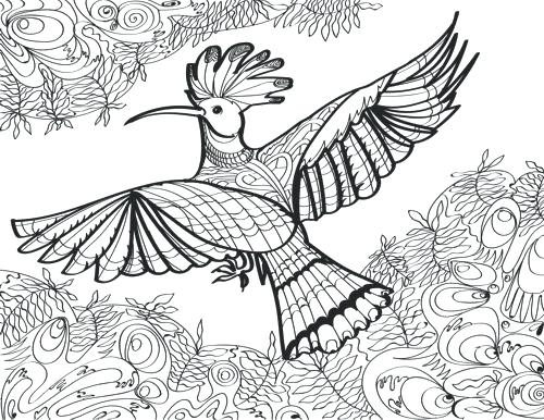 500x386 Coloring Page Of Birds Coloring Page Bird Coloring Pages Bird