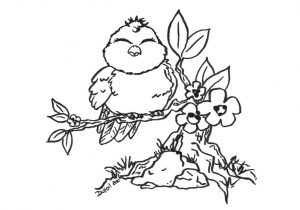 300x210 Coloring Pages For Adults To Print And Color Free Parrots Bird
