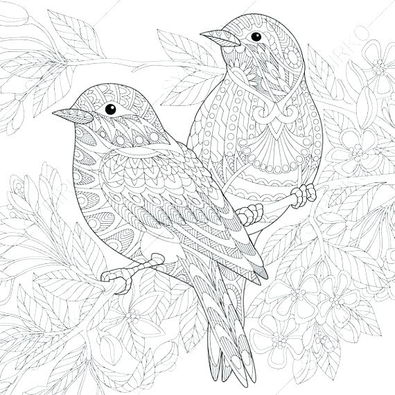 Adult Coloring Pages Birds at GetDrawings.com | Free for ...
