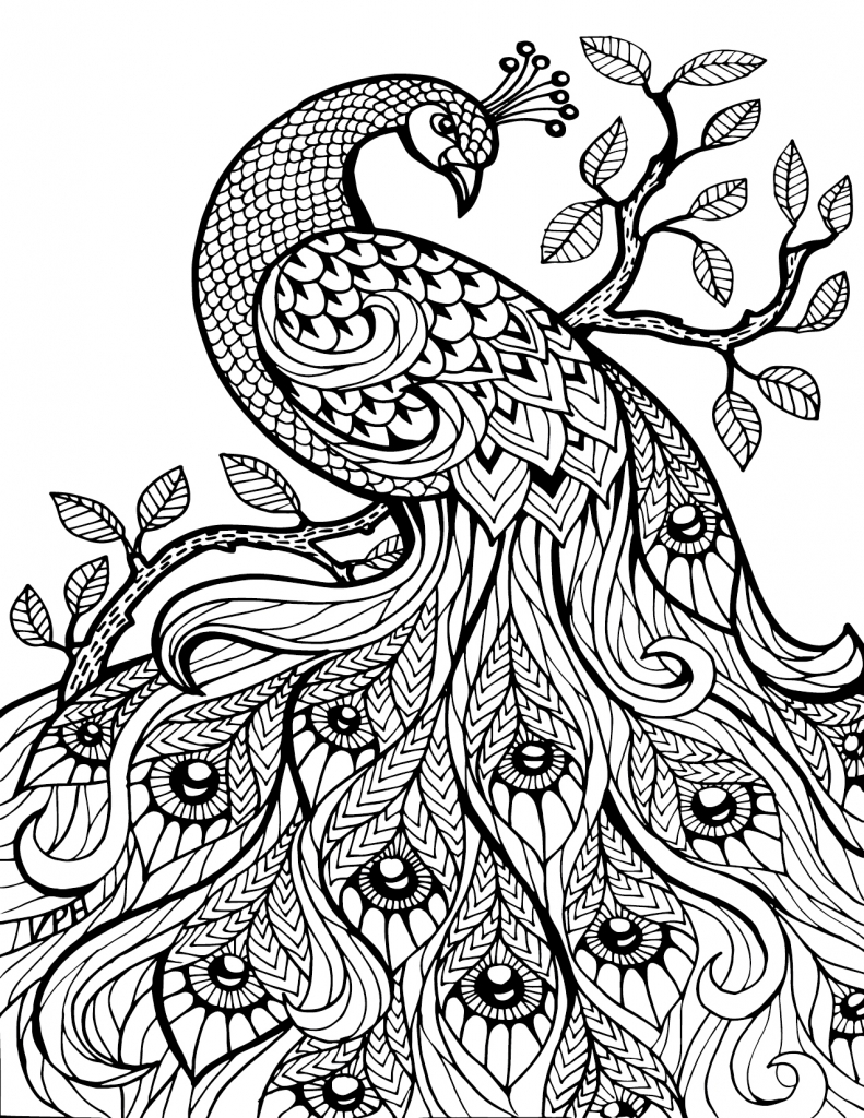 791x1024 Plain Design Adult Coloring Pages Animals Printable Animals