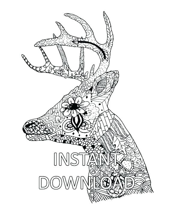 570x737 Deer Head Coloring Pages Deer Coloring Sheet Deer Head Coloring
