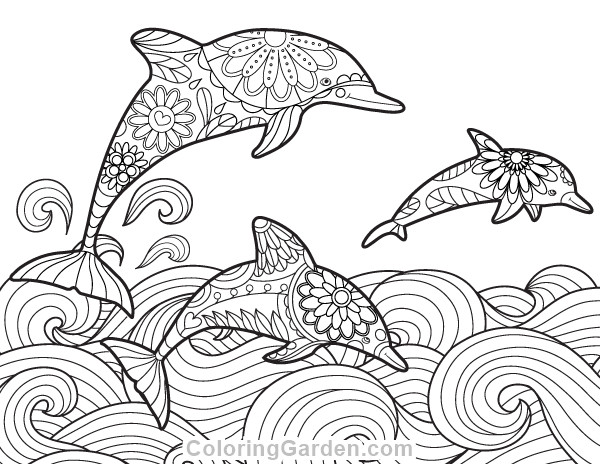 Adult Coloring Pages Dolphin