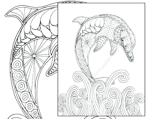 570x457 Printable Dolphin Coloring Pages Dolphin Coloring Sheets Dolphin