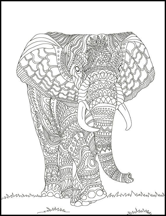 Adult Coloring Pages Elephant