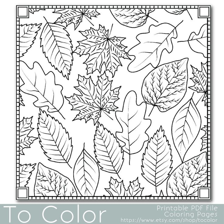 Adult Coloring Pages Fall