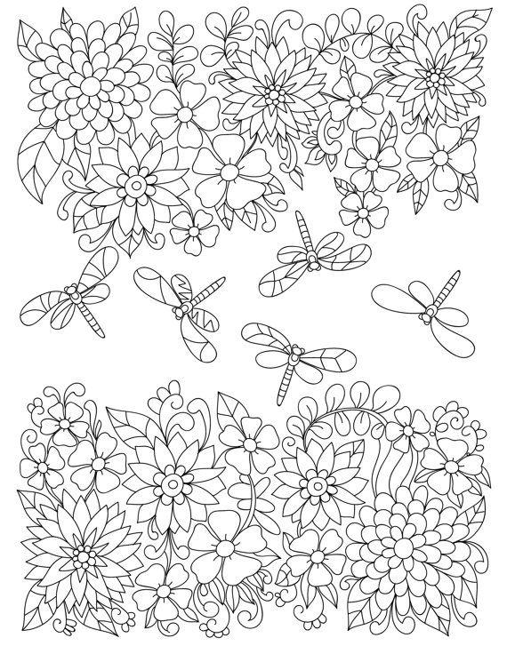 Adult Coloring Pages Garden
