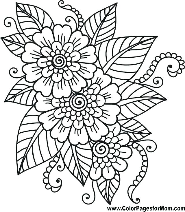 640x732 Flower Garden Coloring Page Coloring Page Of A Flower Printable