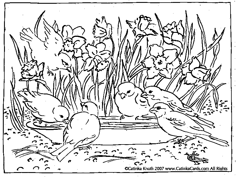 819x615 Garden Coloring Pages Selection Free Coloring Pages