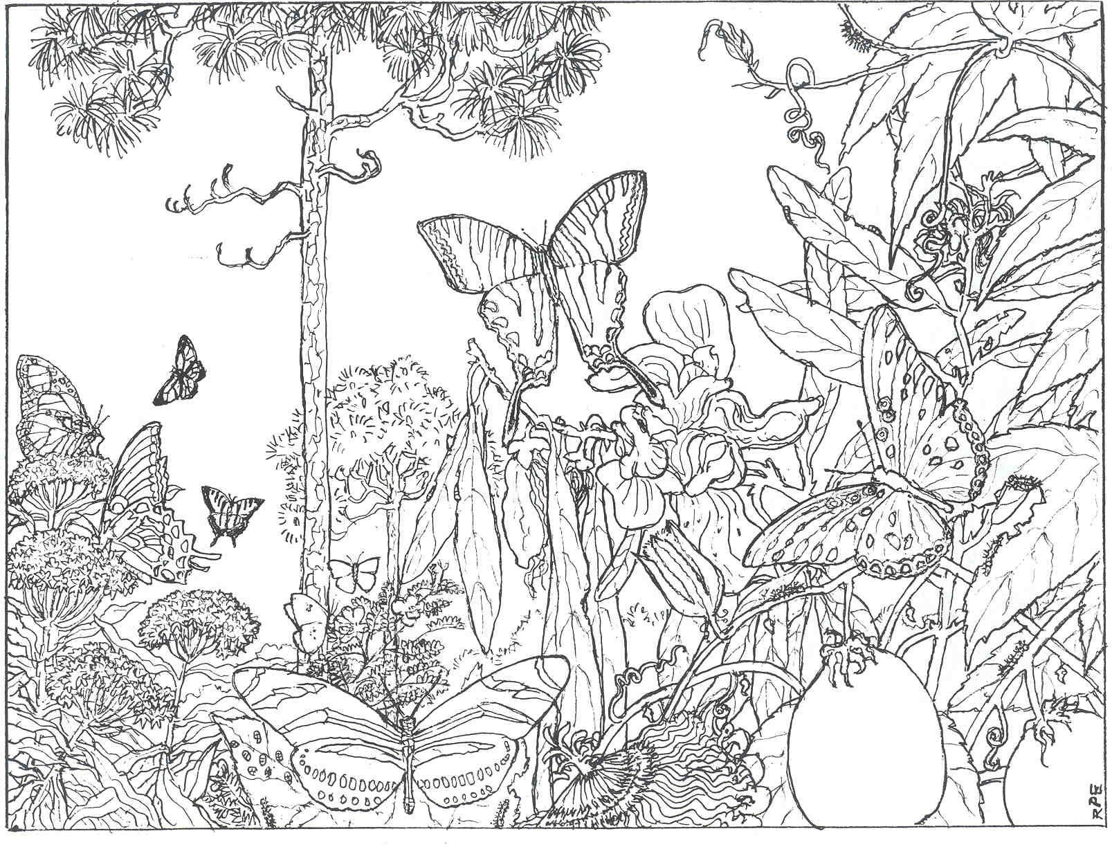 1607x1224 Luxury Hard Garden Coloring Pages Best Ideascollider Free