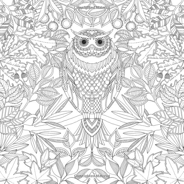 Adult Coloring Pages Garden at GetDrawings.com | Free for personal ...