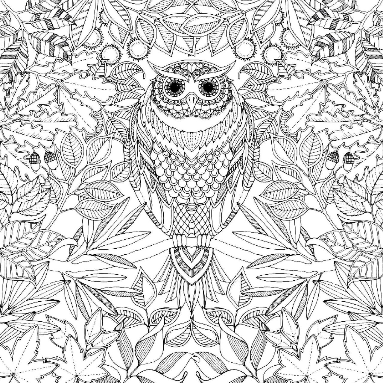 1280x1280 Adult Coloring Pages Of Animals In A Garden Printable