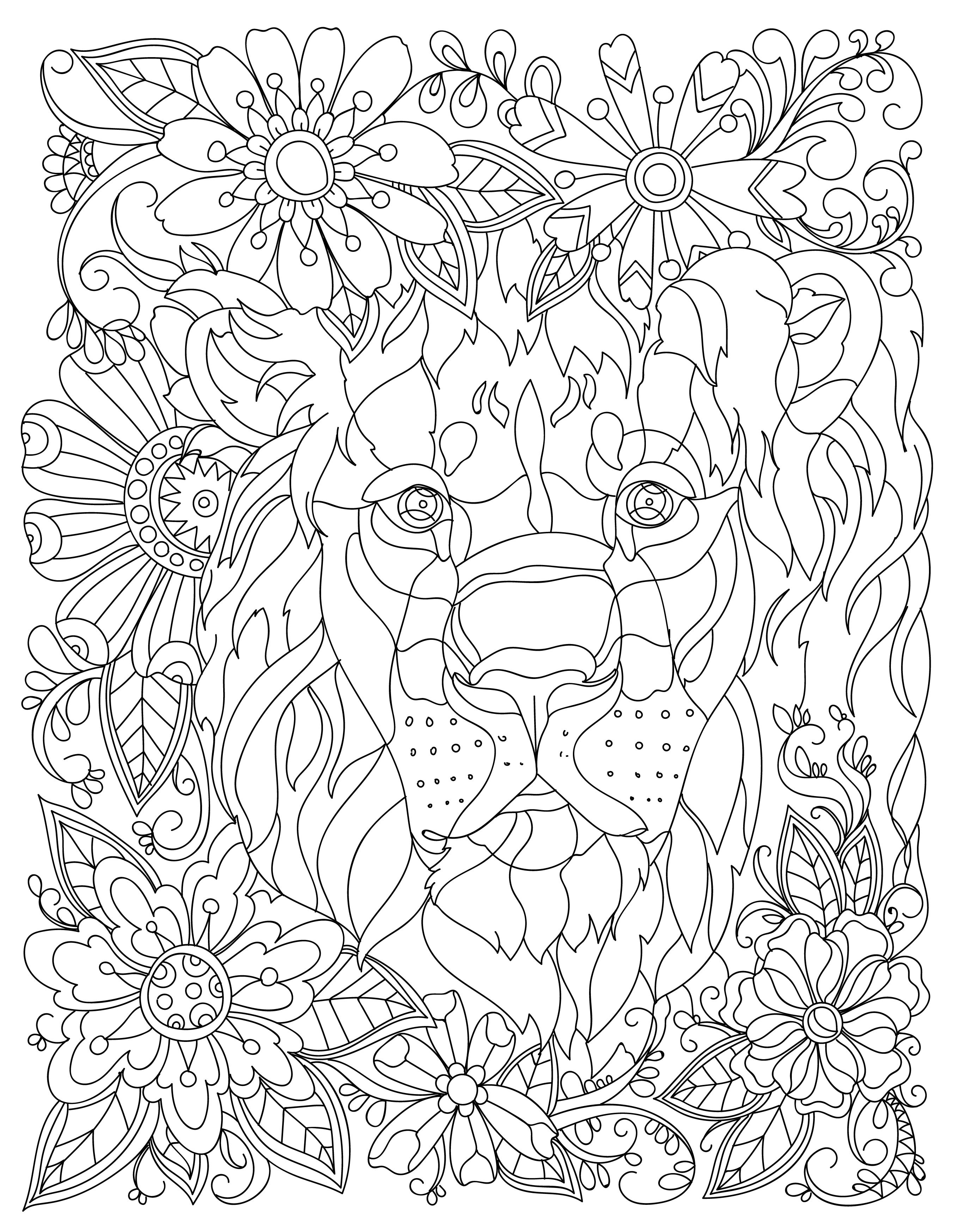 2706x3493 Download This Beautiful Free Lion Adult Coloring Page Coloring