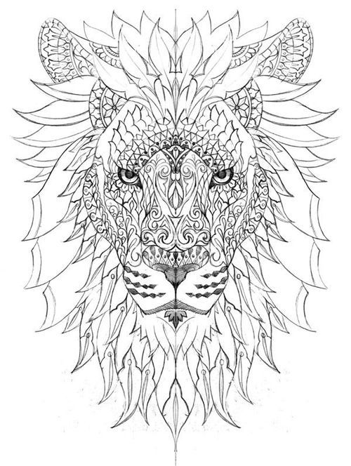 500x664 Best Lion Calavera Images On Coloring Pages, Adult