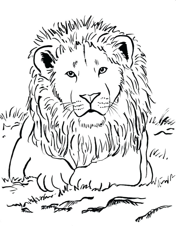 736x943 Lovely Adult Coloring Page For Week Upside Down Lots Of Animal