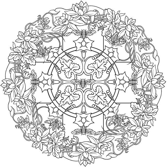 650x651 Creative Haven Nature Mandalas Color Page Adult Coloring Pages