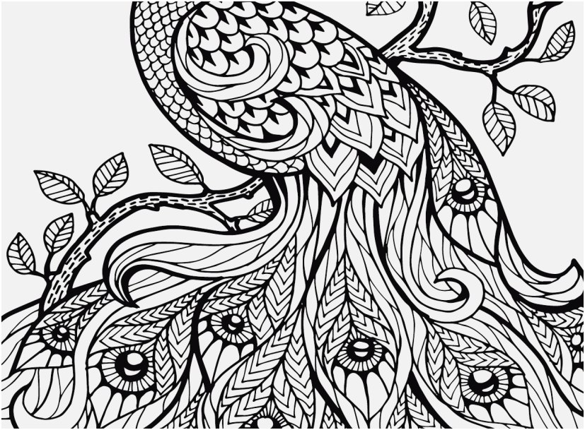 827x609 Adult Coloring Pages Adult Coloring And Coloring Pages