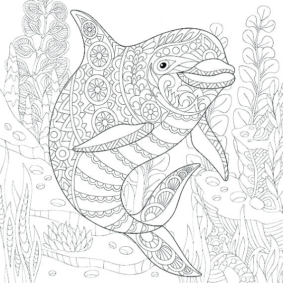 570x570 Ocean Coloring Pages Ocean Life Coloring Pages Oceans Coloring