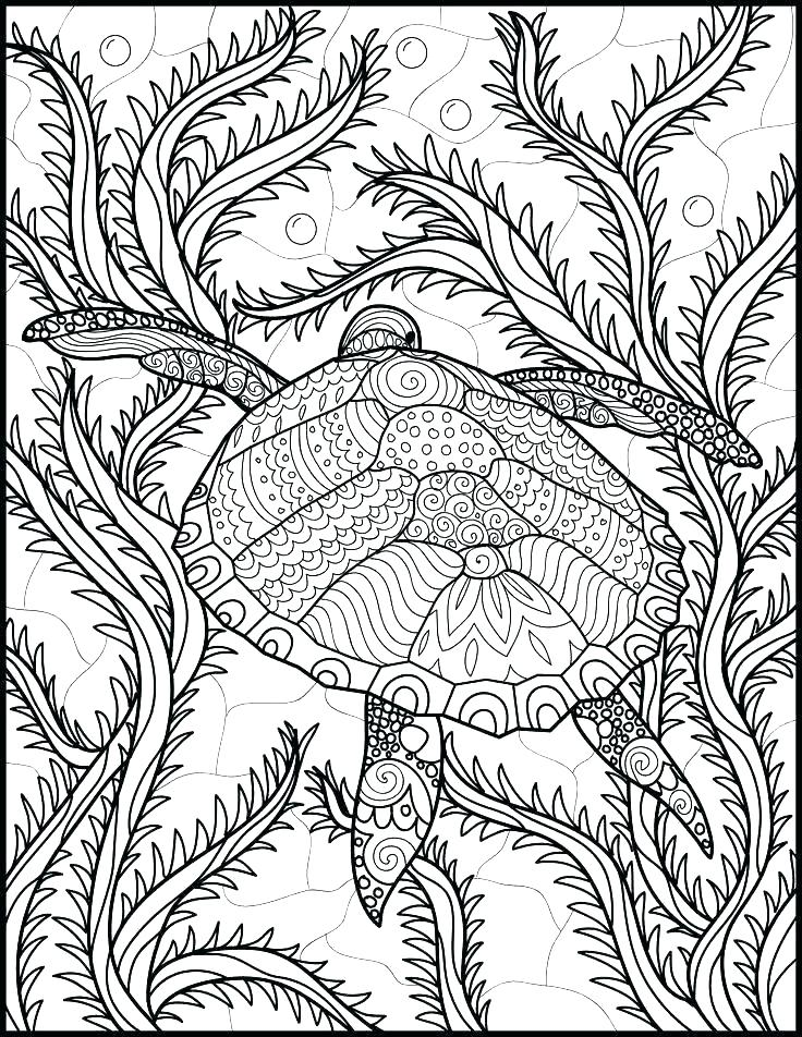 736x952 Ocean Sea Life Coloring Pages Ocean Life Coloring Pages Free