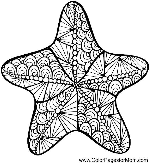 640x696 Starfish Zentangle Colouring Page Coloring